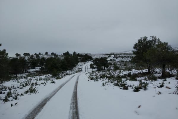 Nieve en la Muela